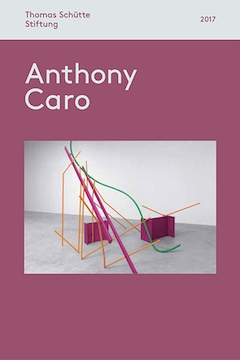 Skulpturenhalle | Anthony Caro